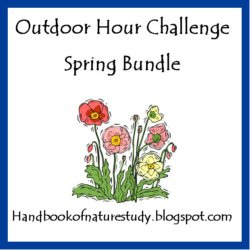 handook of nature study spring bundle