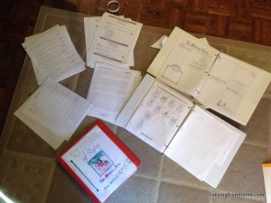 Project Passport activity and lapbook