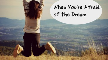 When You're Afraid of the Dream - an Allume story, part 2
