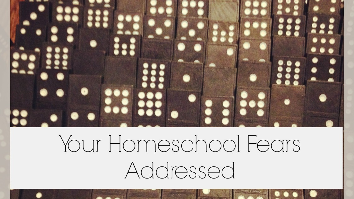 Homeschool Fears Addressed